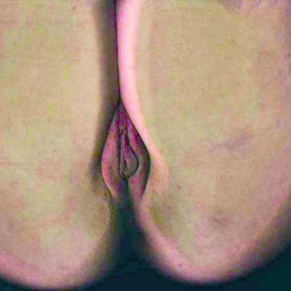 Vagina auf Glastisch